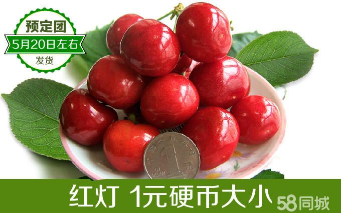 【3斤包邮】基地直供,仅29.99元/斤抢购山东烟台大樱桃
