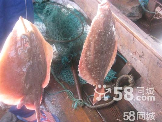 长海县吃海鲜赶海渔家乐